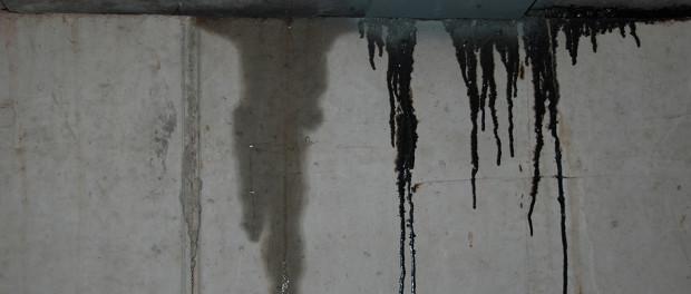 basement water leak