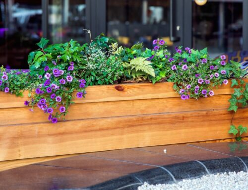 Why You Need to Waterproof Your Outdoor Planter Boxes