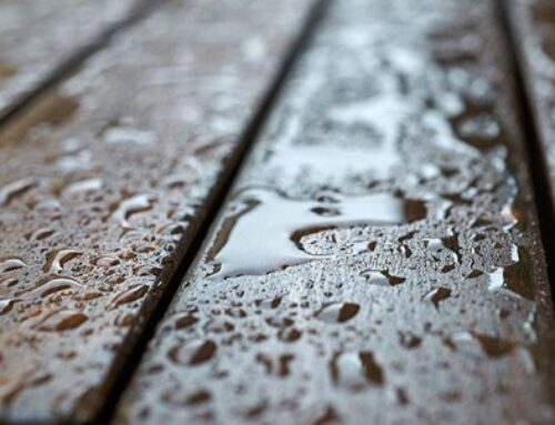 Limiting Mold Growth on Your Outdoor Deck